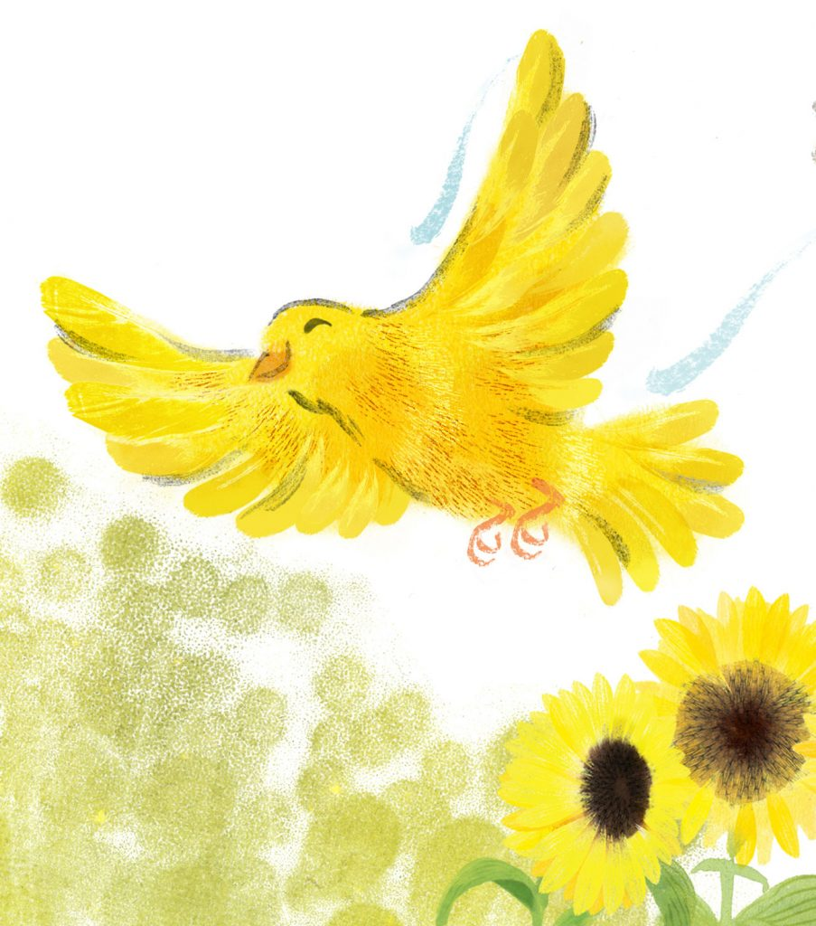 Happy canary for picture book project