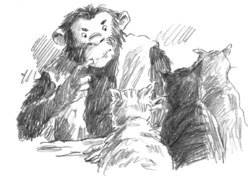 Pencil drawing of chimp with cats