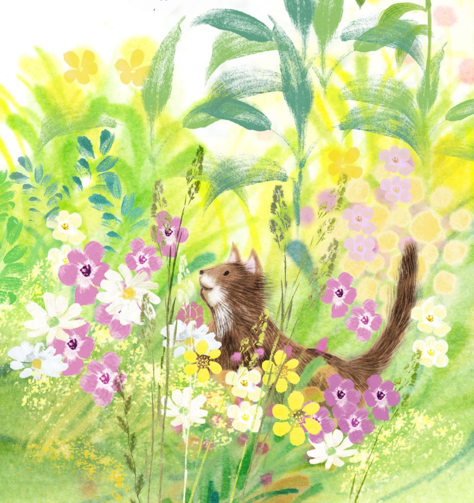 Cat in the flowers - picture book illustration
