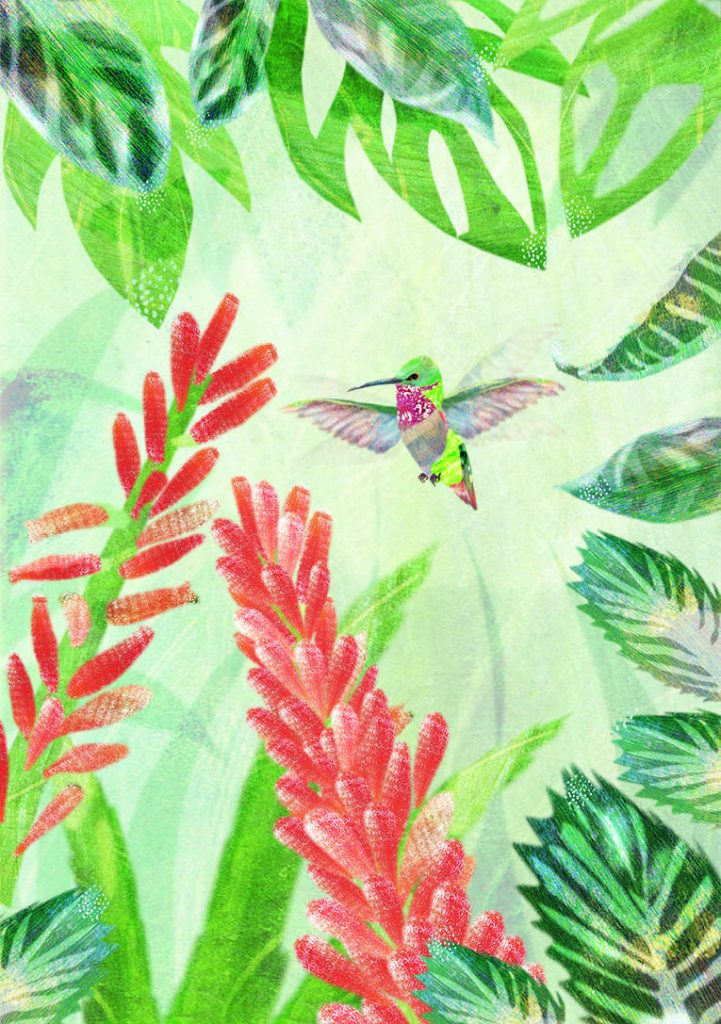 Hummingbird hovering in tropical plants.