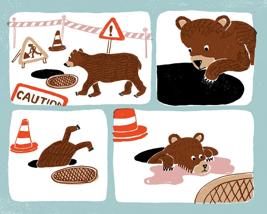 Bear finding a manhole and falling down it