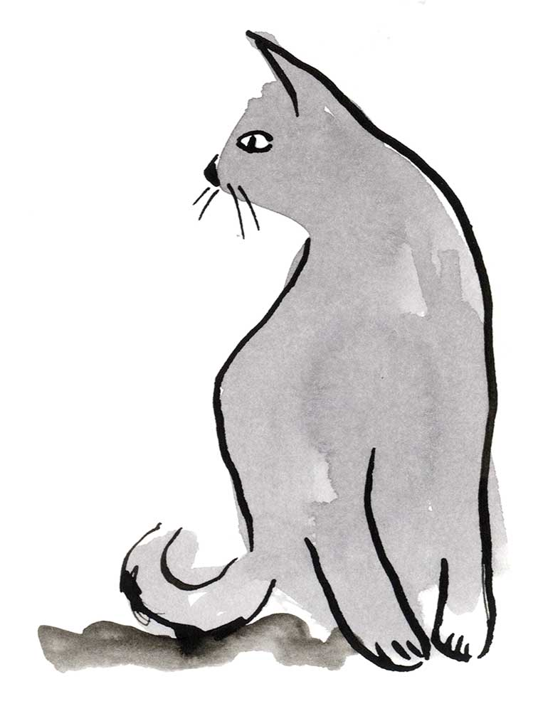 Solitary cat painted in black ink